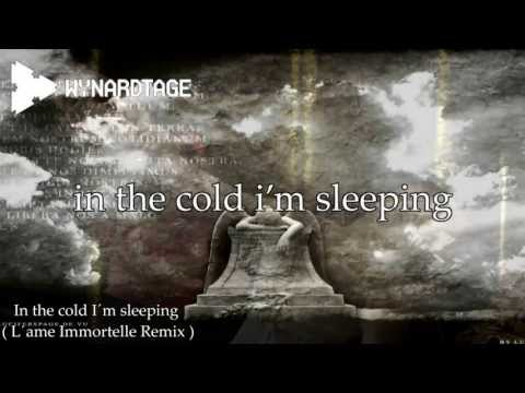 Wynardtage - In the cold I´m sleeping ( L'Âme Immortelle Remix )