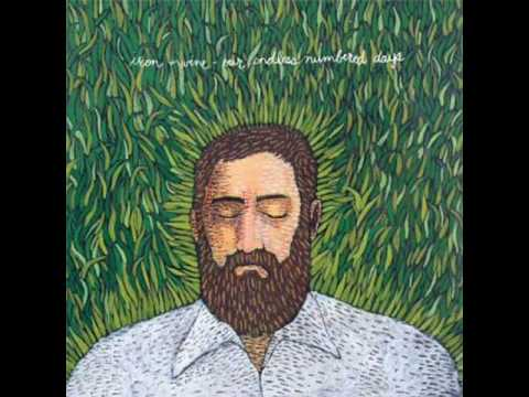 Iron and Wine, Fever dream